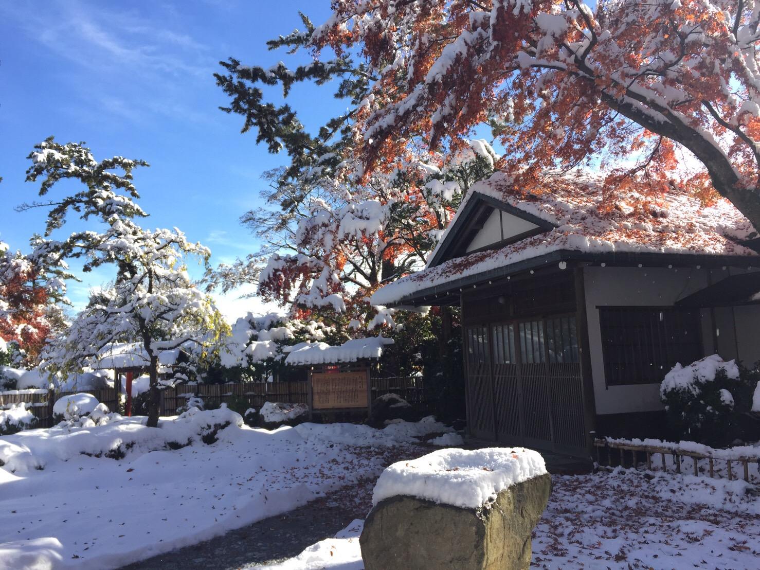 今シーズン初めての雪です!