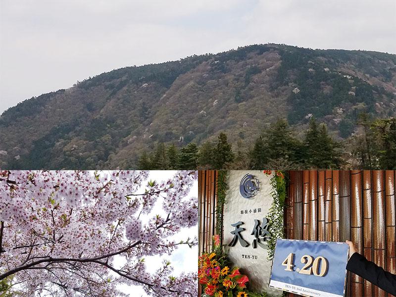 開業2周年記念 新緑の箱根へお出かけ