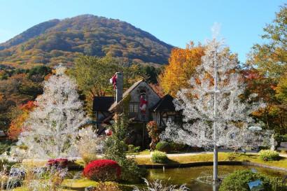 箱根ガラスの森美術館庭園(11月頃)イメージ)