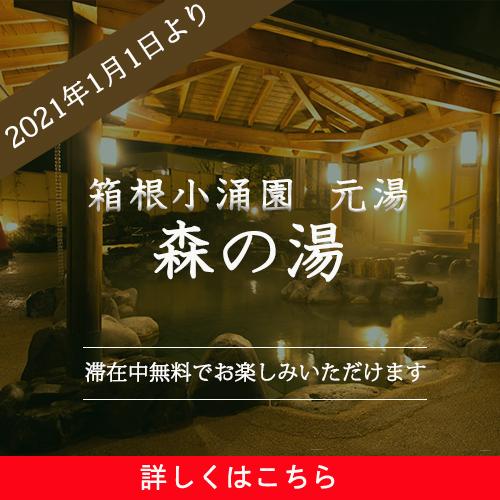 2021年1月1日より 箱根小涌園 元湯を楽しむ滞在 ~森の湯も加わり充実した湯めぐりを~