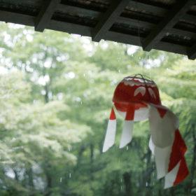 #No.37 #ちょうちん #金魚 #雨の箱根