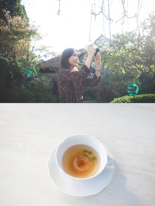 箱根の四季を映したガラスの輝きに<br /> ときめく。