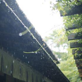 #No.54 #甘酒茶屋 #雨