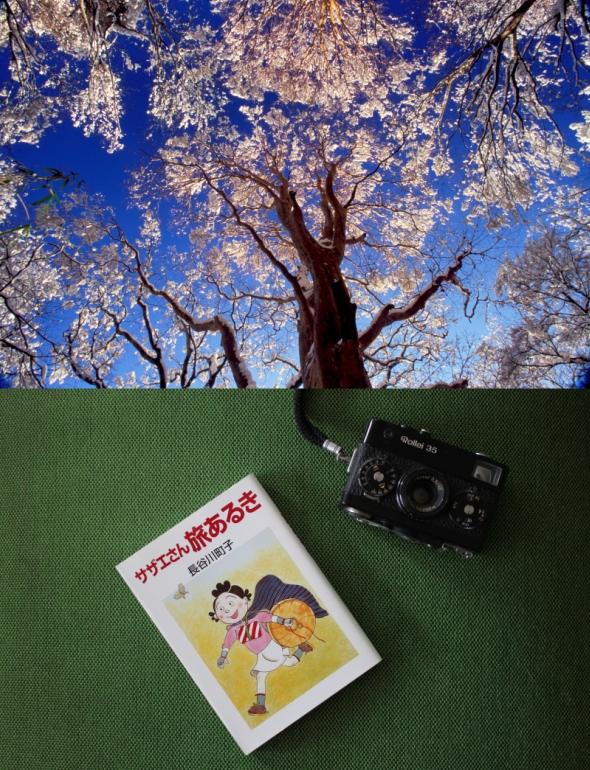 箱根に母娘旅に行きたくなる<br /> 『サザエさん旅あるき』<br />