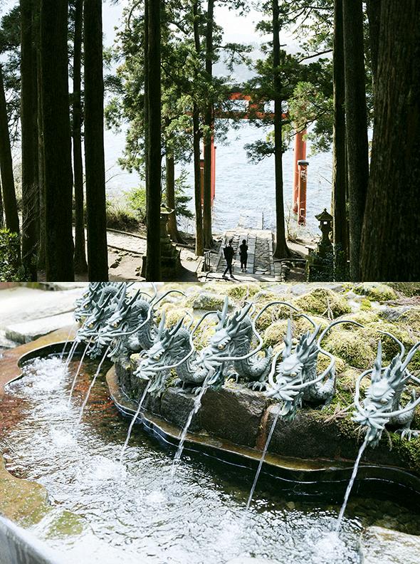 荘厳な杉並木に囲まれ、緑豊かな「箱根神社」にまずはお参りを。