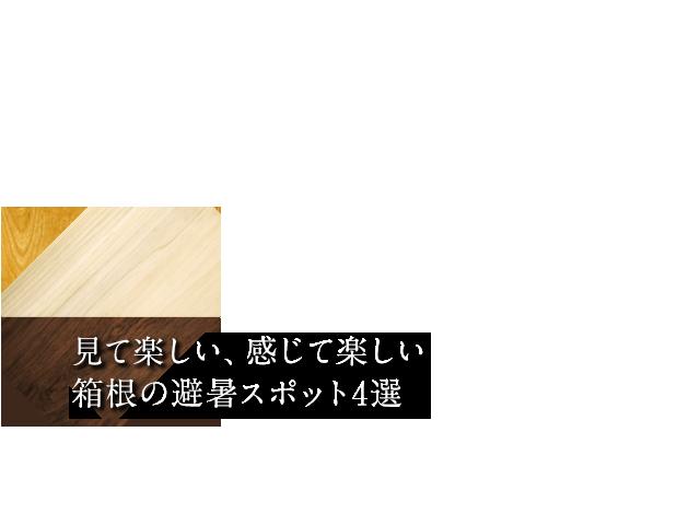 見て楽しい、感じて楽しい箱根の避暑スポット4選