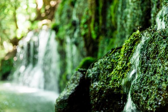 水が幾筋にも流れ落ちる珍しい滝