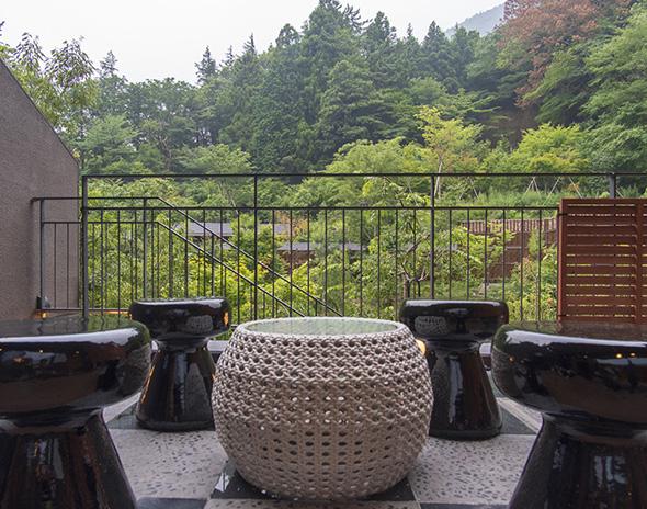 客室から望む、箱根の自然