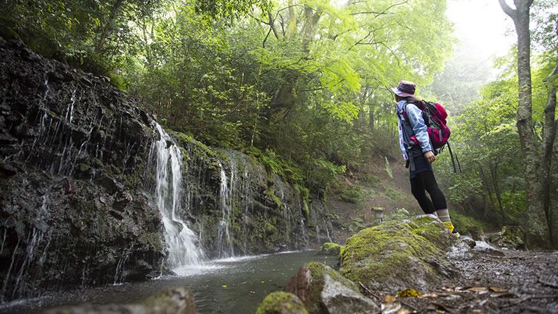 箱根の大自然
